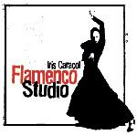 Flamenco Hamburg Ausbildung